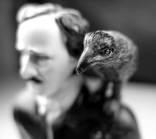 Poe & Raven