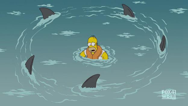 Sharks0