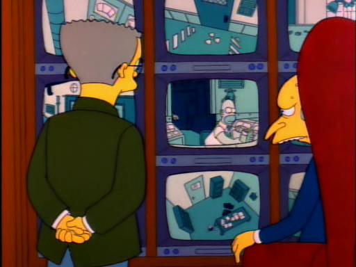 Mr Lisa Goes to Washington6