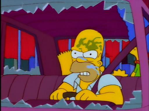 The City of New York vs. Homer Simpson5