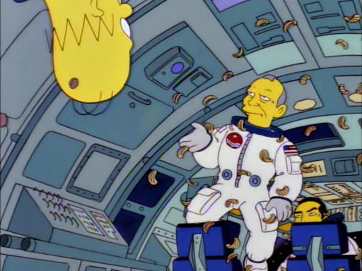 Deep Space Homer7