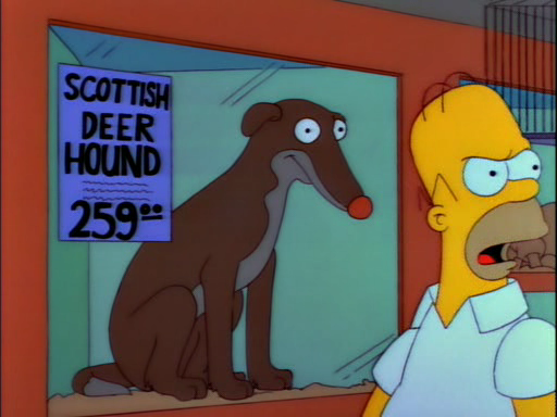 Lisa's Pony18
