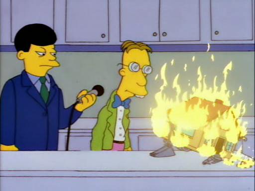 Homer the Vigilante12