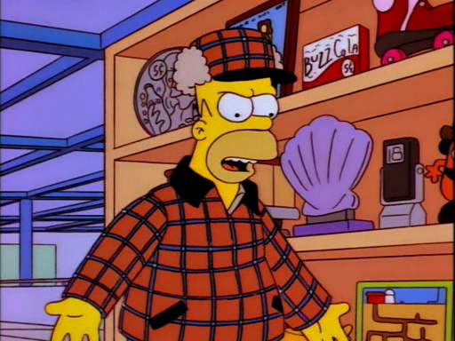 Homer's Phobia11